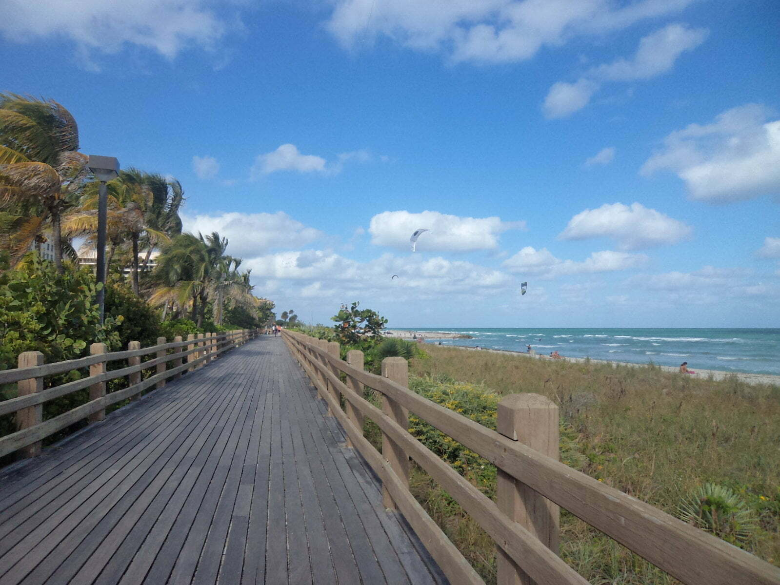 Paragliders em Miami Beach - Flórida, EUA