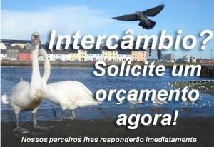 Orçamenato de Intercâmbio_3