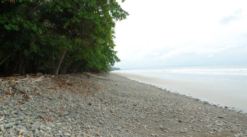 Playa Ballenas, Costa Rica