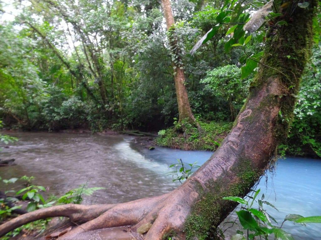 Rio Celeste, Vulcão Tenório-Costa Rica