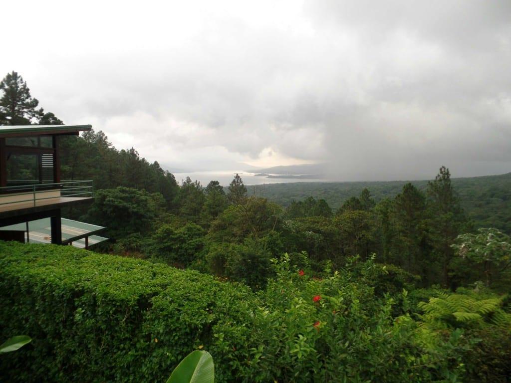Árvore Ceiba próximo ao Vulcão Arenal - Costa Rica