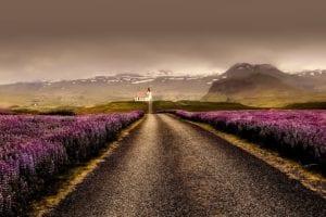 Estrada de pedra na Islândia, verão - foto Pexels