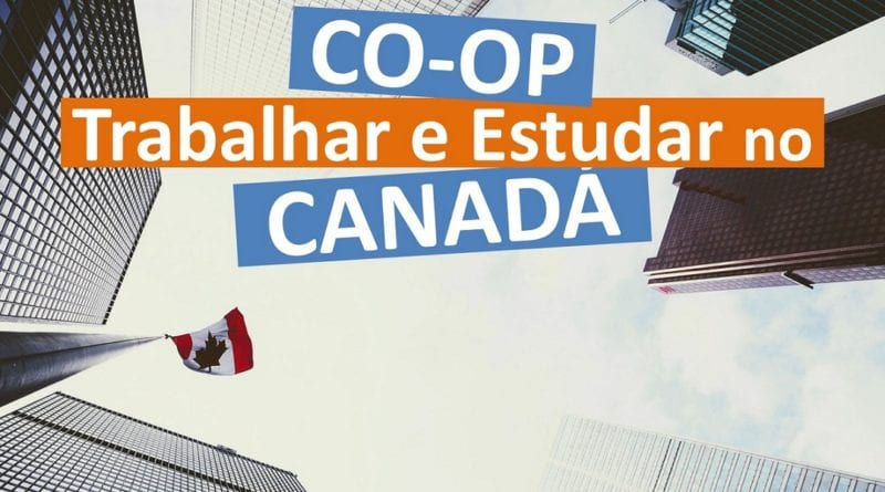 Intercâmbio Co-op - Como Trabalhar e Estudar no Canadá - Foto Pexels